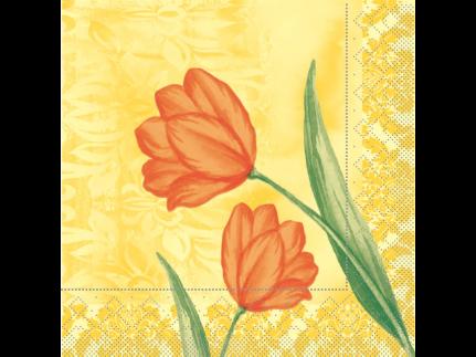 """Servietten Tissue 3-lagig, 33 x 33 cm, 1/4 Falz, """"SALLY"""" orange"""