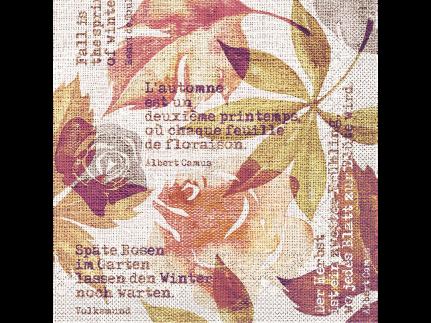 "Servietten Tissue 3-lagig, 33 x 33 cm, 1/4 Falz, ""GUNNAR"" terrakotta"